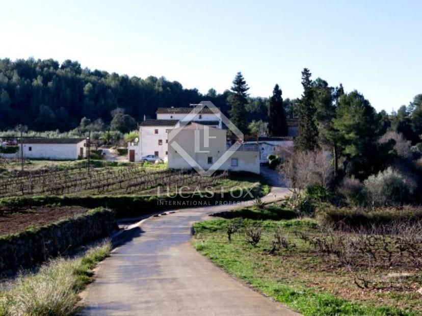 spanish vineyards for sale